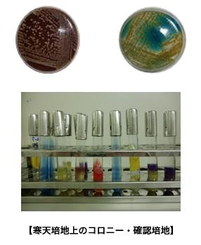 laboratory02