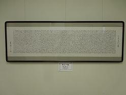 DSCN8953